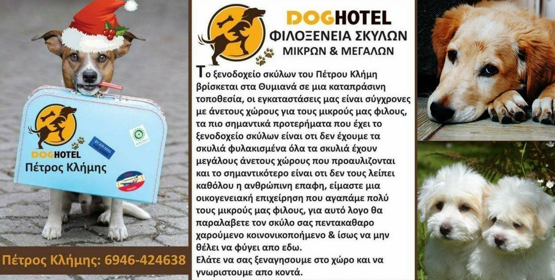 Dog Hotel - Ξενοδοχείο σκύλων - Χίος