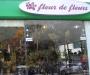 Fleur de fleurs - ANΘΗ -ΦΥΤΑ -ΔΩΡΑ - Χίος