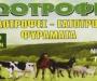 Πούλος Νικόλαος - Ζωοτροφές - Χίος